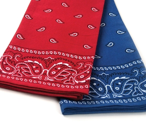 Bandana Kitchen Towels